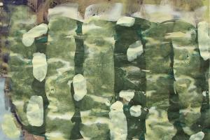 Mischtechnik auf Papier     50x70 cm     2012
